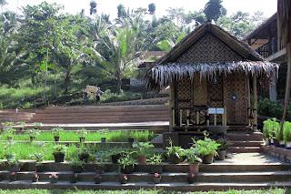 [CoC Regional: Lokasi Wisata] Wisata Keluarga di Karang Penginyongan