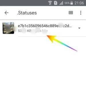 Cara Download Video dan Foto dari Status WhatsApp