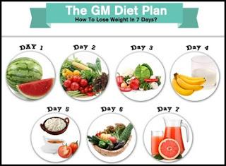 General Motors Diet