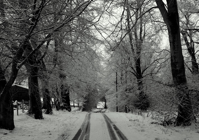 Our road, snowy and slippy