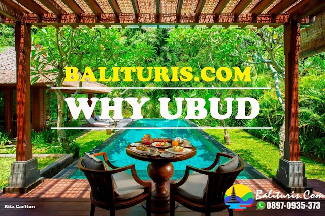 Ubud tour Bali, BALI TOUR UBUD, BALI TOUR DRIVER, BALI TOUR SERVICE