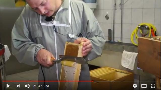 Τρύγος μελιού στην Ελβετία VIDEO