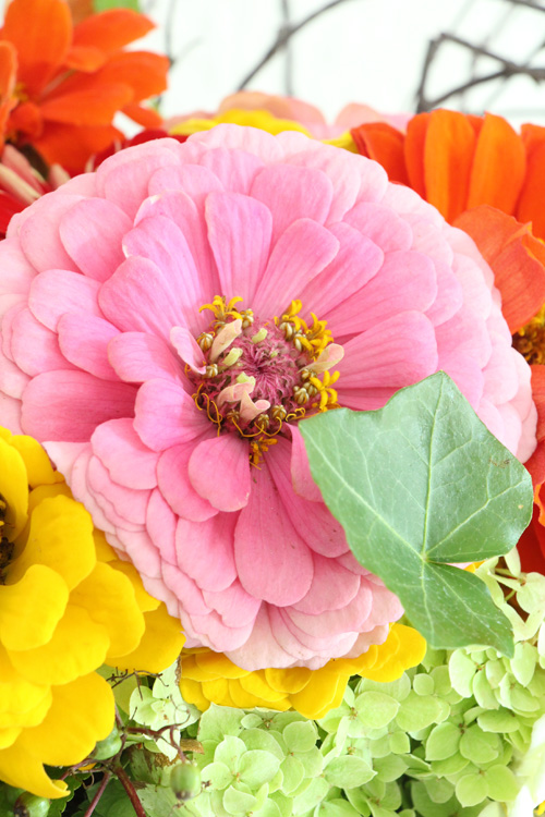 Annette Diepolder, Blumenstrauß, Floristik, Zinien, Betonvase, DIY