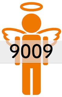エンジェルナンバー 9009