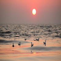 L'immagine del sole richiama l'elaborazione metafisica in cui Heschel è maestro.