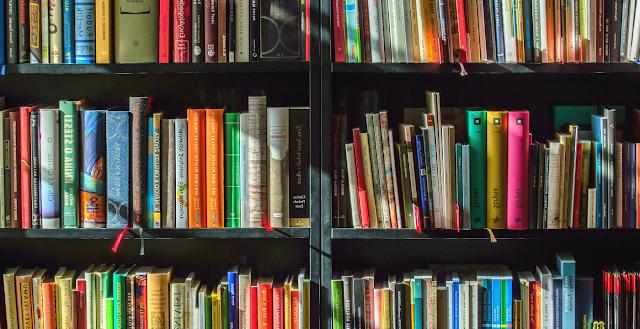 libreria piena di testi