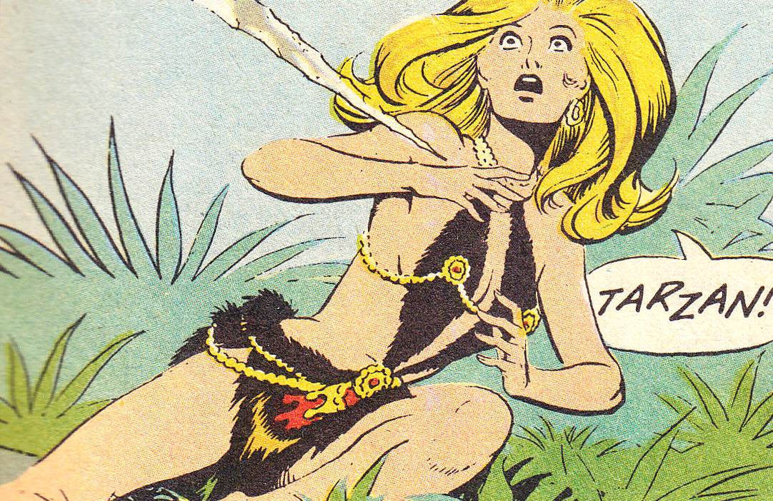 Image result for tarzan and jane russ manning cover