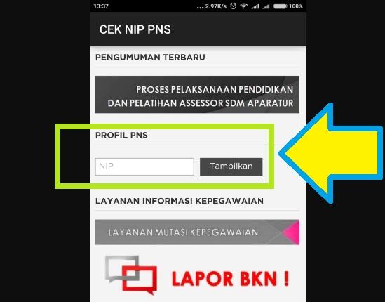 Cek Profil PNS BKN Menggunakan Aplikasi Cek NIP Profil PNS 3