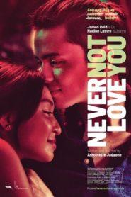 Never Not Love You Full Movie 2018