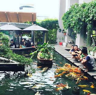 Diễn đàn rao vặt tổng hợp: Tham khảo tác dụng của thiết kế sân vườn tại nhà Thi-cong-ho-ca-koi-tai-thanh-hoa-19