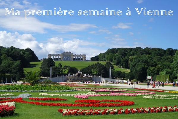vienne vienna expatriation schonbrunn été summer jardins gloriette