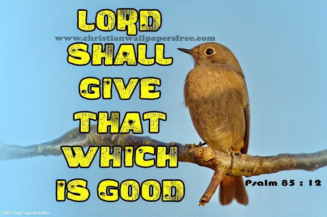 LORD shall give that which is good