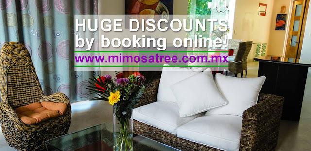 http://www.mimosatree.com.mx/