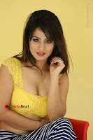 Cute Telugu Actress Shunaya Solanki High Definition Spicy Pos in Yellow Top and Skirt  0455.JPG