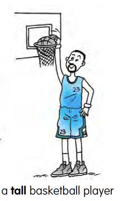 A Tall Basketball Player