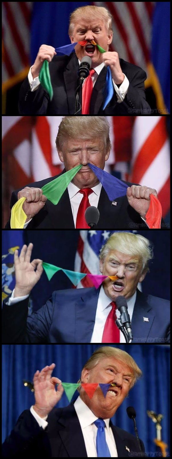 Funny Trump Flags Collection Pictures