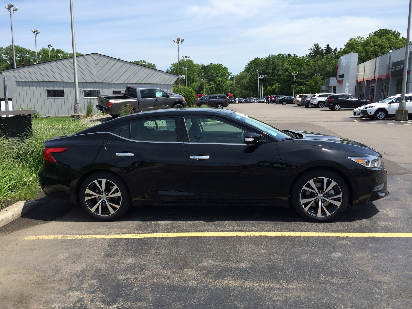 hoselton auto mall the 2016 nissan maxima is at hoselton. Black Bedroom Furniture Sets. Home Design Ideas