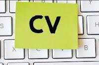 Comment ajuster son CV à chaque offre d'emploi