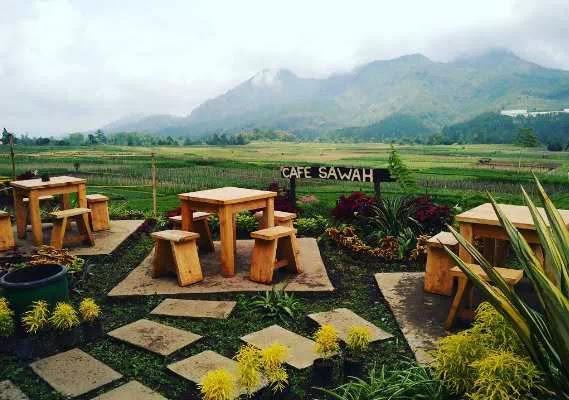 Nuansa Pedesaan Cafe Sawah Pujon