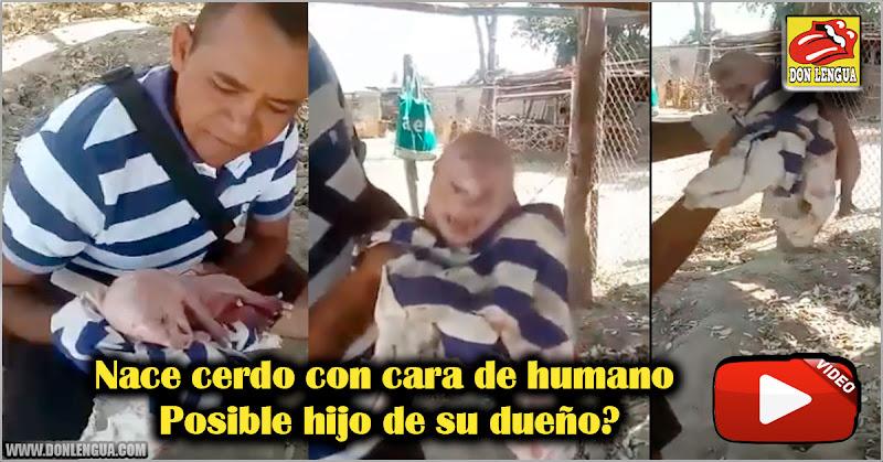 Nace cerdo con cara de humano en Venezuela -  Posible hijo de su dueño?