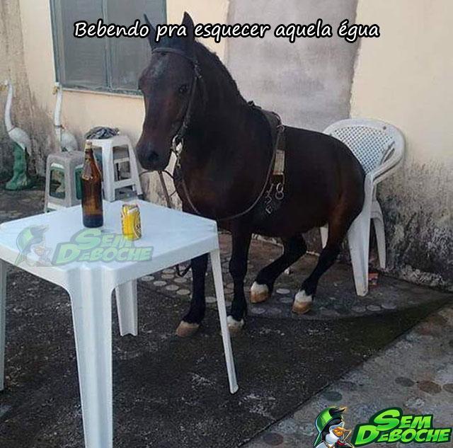 BEBENDO PRA ESQUECER AQUELA ÉGUA