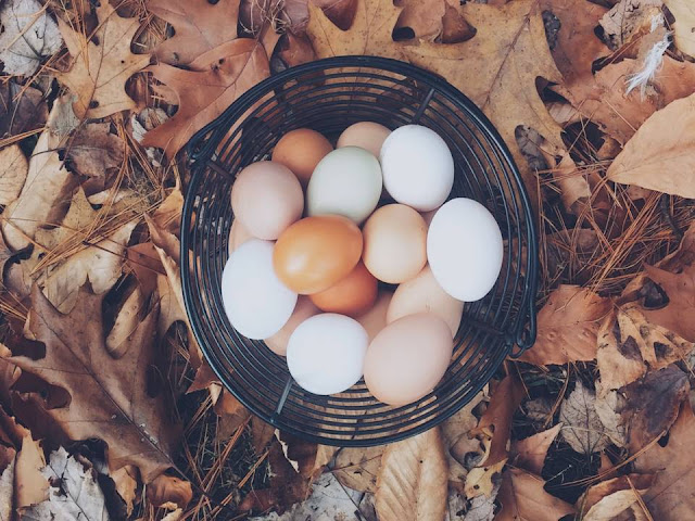 ¿Los huevos son malos para el hígado?