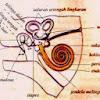 Pengertian, Bagian Bagian Telinga dan Fungsinya + Gambar Ilustrasi