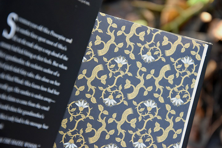 Offenes-Buch-Innenseite