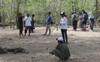 Miris! Suara Masyarakat Pulau Rinca NTT Terhimpit Proyek Besar 'Jurassic Park'