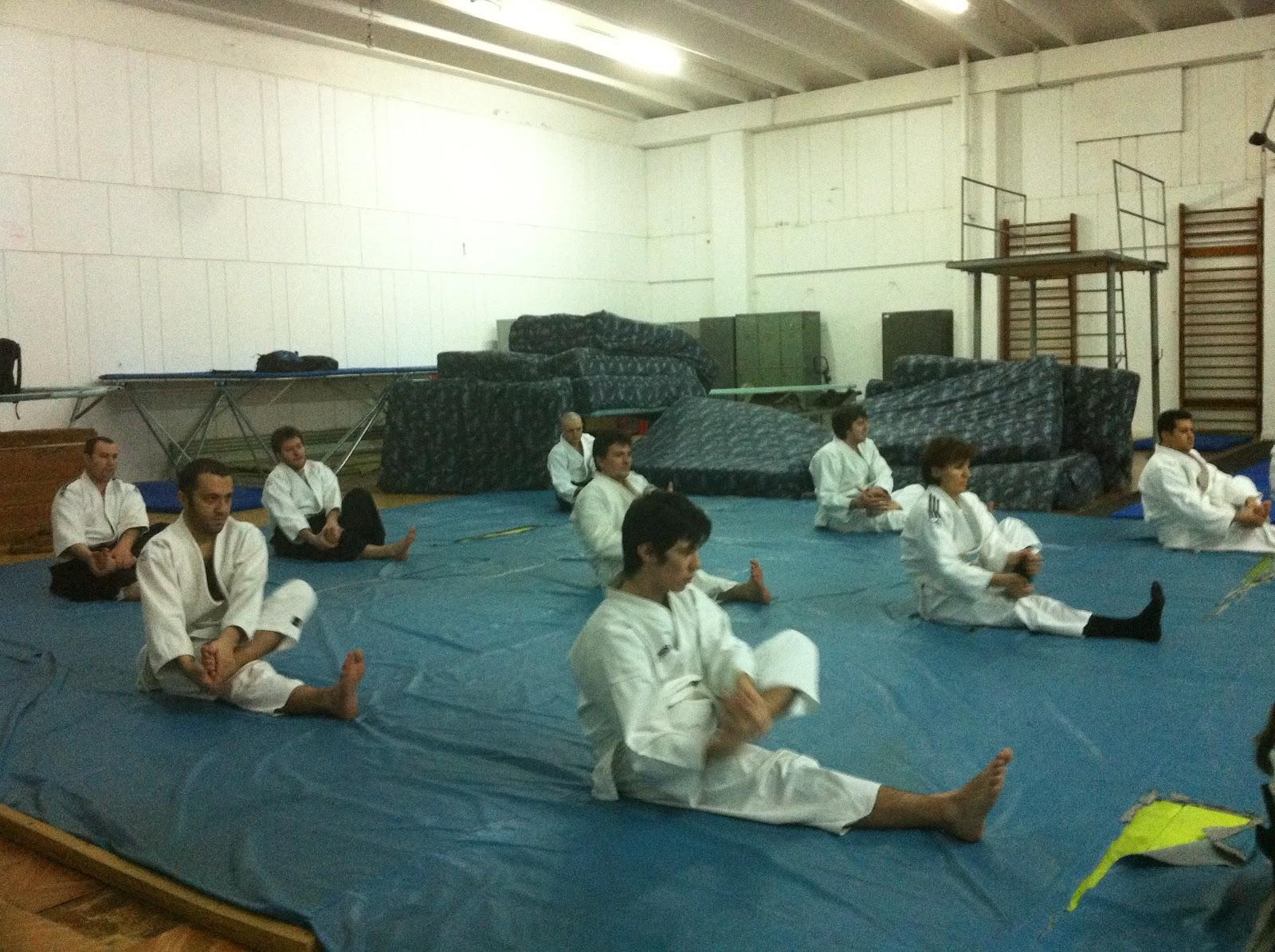 viziune și taekwondo)