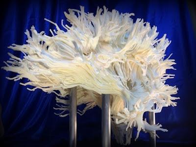 Sustancia cerebro impresa 3D