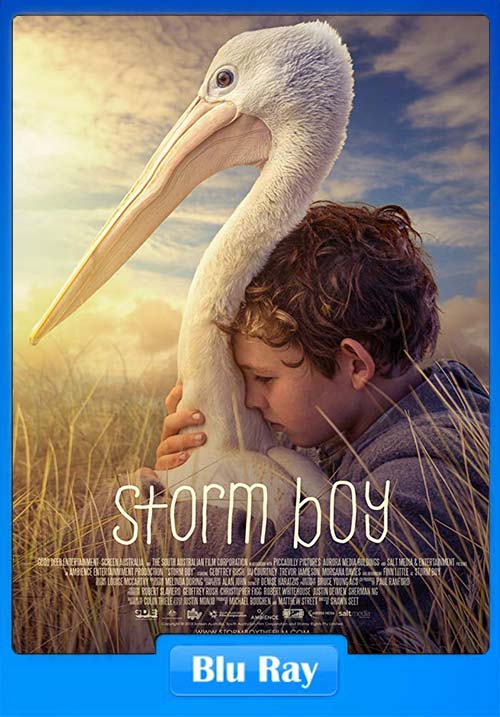 Storm Boy 2019 720p BluRay x264 | 480p 300MB | 100MB HEVC Poster