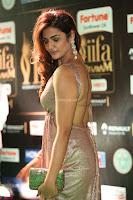 Telugu Actress Aarthi in Deep Neck Backless Golden Gown at IIFA Utsavam Awards 2017 Exclusive 23.JPG
