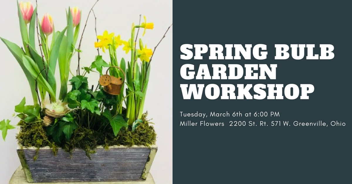 DarkeJournal.com: Upcoming Events at Miller Flowers