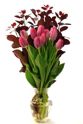 tulip and cotinus bouquet