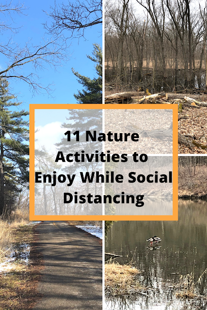 11 Nature Activities to Enjoy While Social Distancing