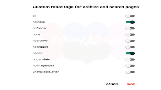 Enable Custom Robots for search and archive page