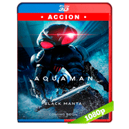 Aquaman (2018) 3D SBS 1080p Audio Dual Latino-Ingles
