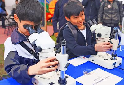 Educación en ciencia, importancia de la educación en ciencia, por qué es importante la educación en ciencia