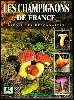 Les champignons sur yakachiner.be