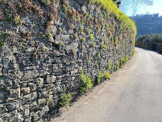 View of Via Marieni, Bergamo.