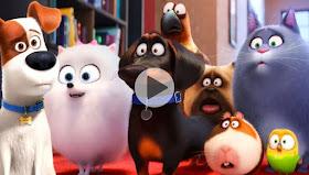 The Secret Life Of Pets 2 2019 Watch The Secret Life Of Pets 2 2019