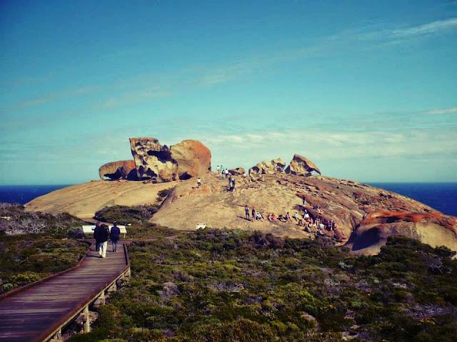 kangaroo island blog