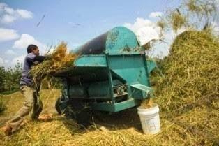 Mesin pengolahan padi