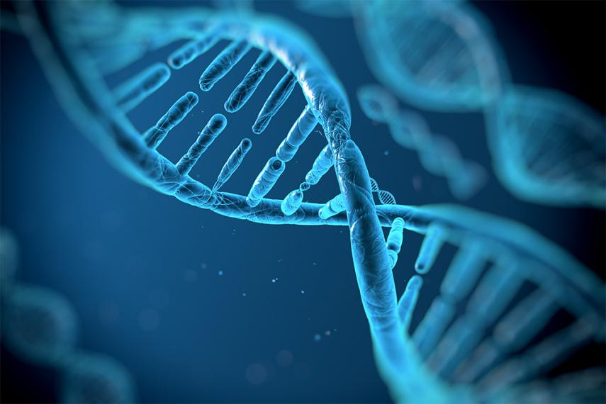 O presidente Trump  sancionou uma lei,  o Rapid DNA Act ), os tribunais (que determinaram que a polícia podem coletar rotineiramente amostras de DNA de pessoas
