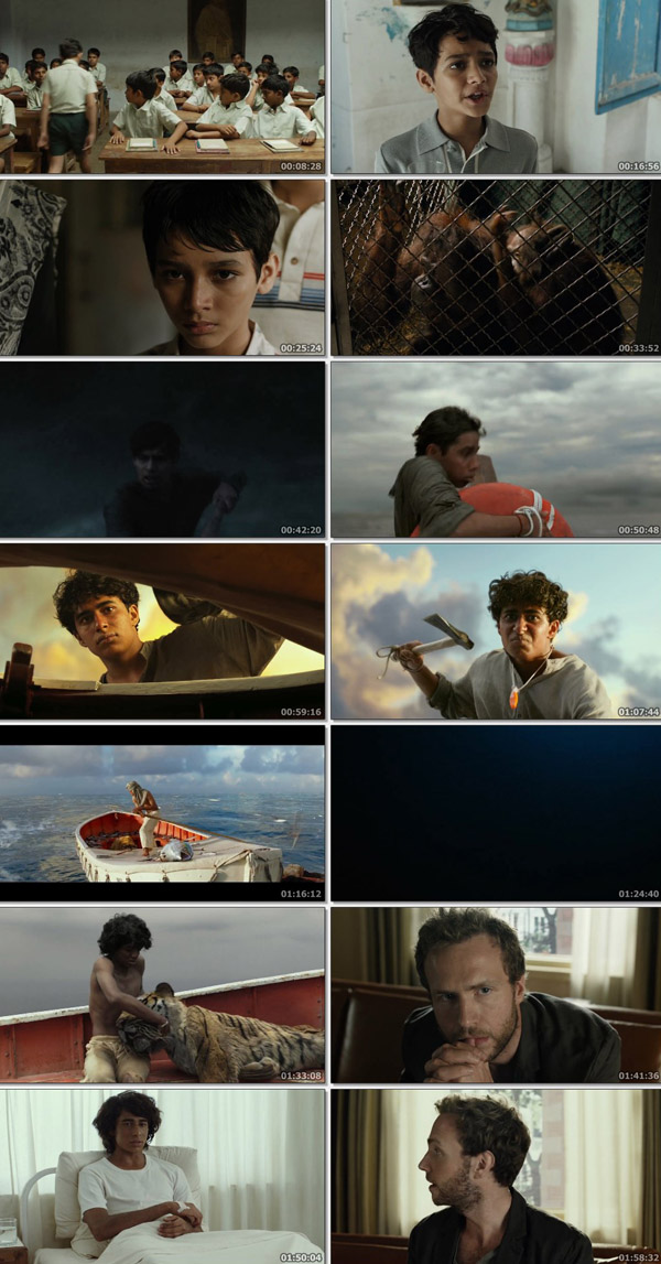 Download Life of Pi 2012 Dual Audio ORG Hindi 480p BluRay 400MB ESubs movie