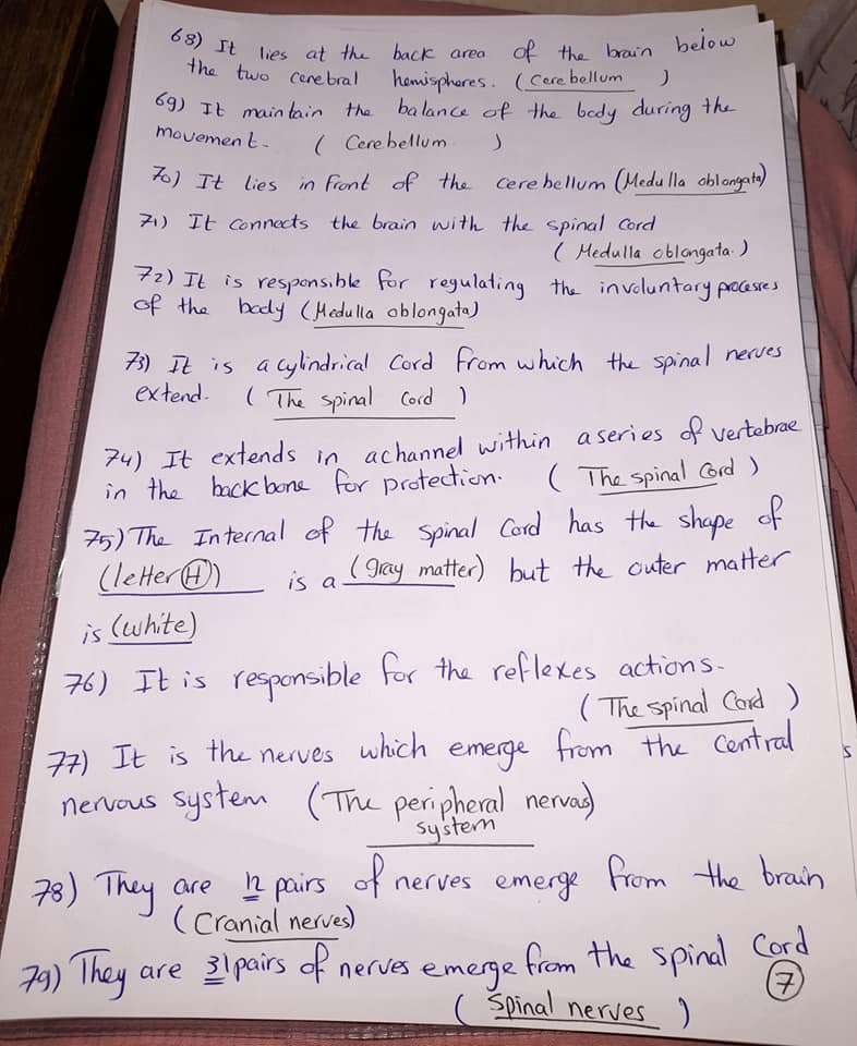 شيت خاص بسؤال write the scientific term علي المنهج كامل grade6_science 7