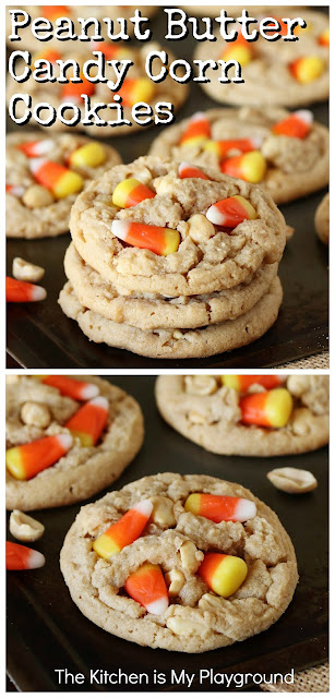 Peanut Butter Candy Corn Cookies ~ Loaded with peanut butter, dry roasted peanuts, and candy corn melted in the center & tucked on top, these cookies are one delicious treat, indeed! It's that super tasty sweet-and-salty combination we love, in one fun little fall cookie. A perfect Halloween sweet treat, too! #candycorncookies #candycorn #Halloweencookies  www.thekitchenismyplayground.com