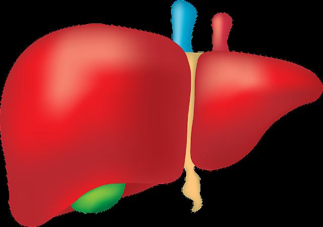 4 Gejala Penyakit Liver dan Cara Mengobatinya