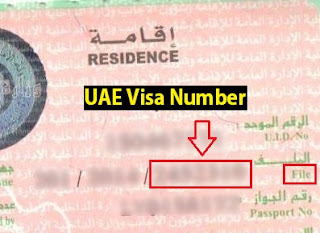UAE Visa number on visa page, uae file no, uae visa file number